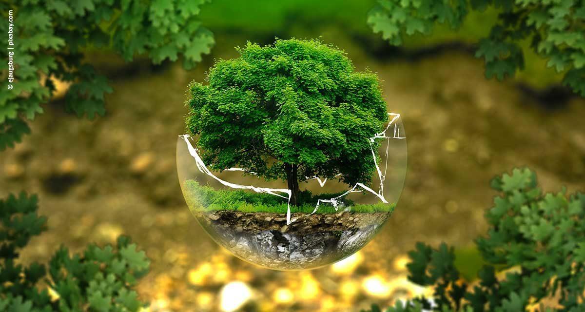 Coalizão Brasil Clima, Florestas e Agricultura promove debate sobre o uso da terra e o papel das eleições 2018