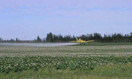 Proposta moderniza Lei dos Defensivos e deve reduzir uso de substâncias químicas nas lavouras, avalia SRB