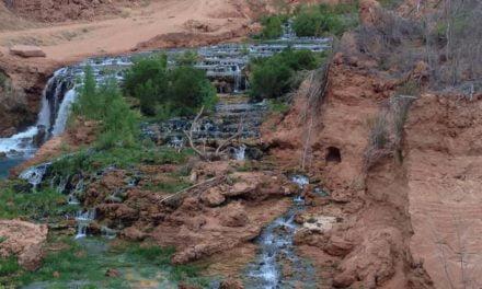 Syngenta e Sargs firmam parceria pela conservação de solo e água