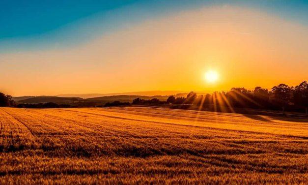 O agro conquistará mais de 1,2 trilhão de dólares em dez anos