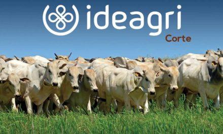 Ideagri Corte: lançamento no Fórum da Pecuária Lucrativa