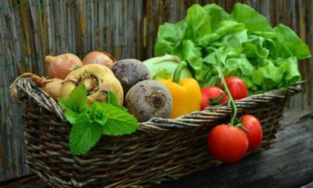 IHARA amplia atuação na agricultura orgânica