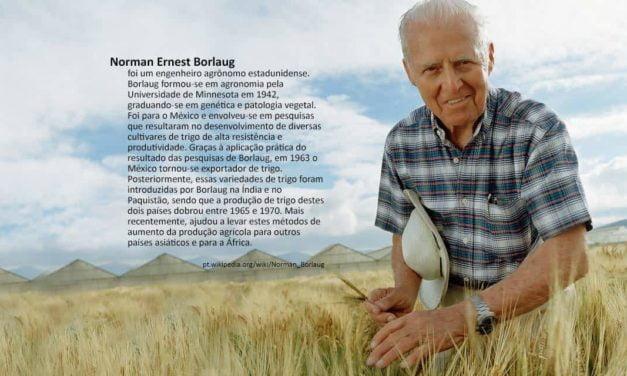 Pesquisadora na área de biossegurança, Leila Macedo recebe prêmio Norman Borlaug 2018