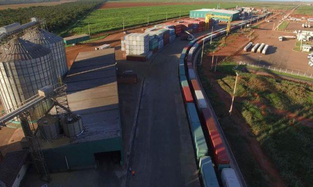 Brado movimenta 260 mil toneladas no primeiro ano de operação focado no mercado interno