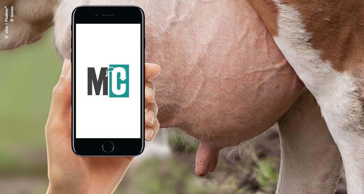 Aplicativo auxilia produtor rural a gerir dados reprodutivos e produtivos de rebanho leiteiro