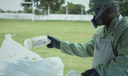 Brasil comemora 14ª edição do Dia Nacional do Campo Limpo