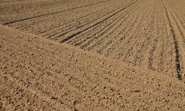 Práticas de manejo e conservação de solos fazem parte do temário do Muda Cana