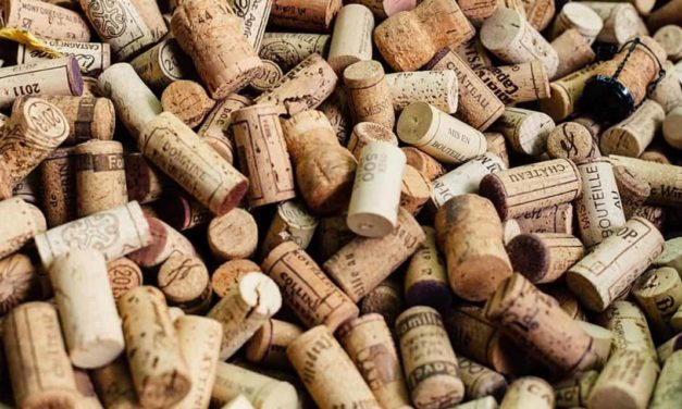 Feira Internacional do Vinho terá 250 marcas nacionais e internacionais