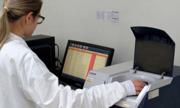 Yes lança ferramenta gratuita de monitoramento online de micotoxinas em grãos para alimentação animal