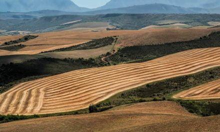 Governança de terras: uma questão de soberania nacional