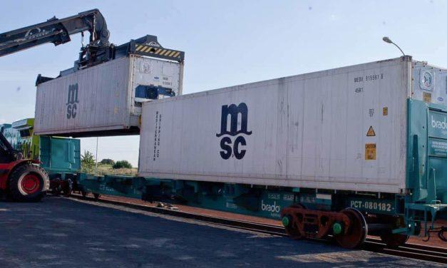 Parceria entre Brado e TCP potencializa indústria da madeira em Ponta Grossa
