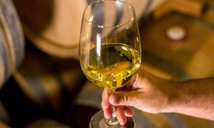 Ibravin e Apex-Brasil renovam convênio para alavancar exportações de vinhos e sucos brasileiros