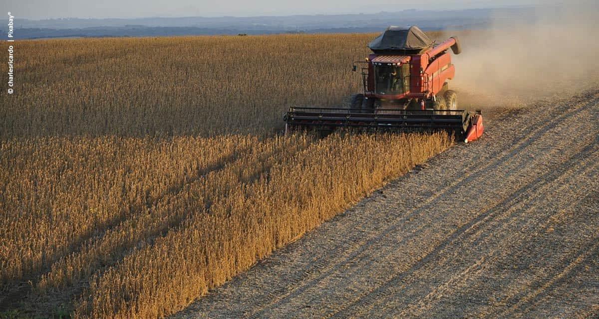 Fertilizante biotecnológico aumenta produtividade e gera receita adicional para a soja