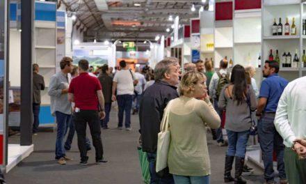 Vinho brasileiro na vitrine internacional com a inauguração da Wine South America