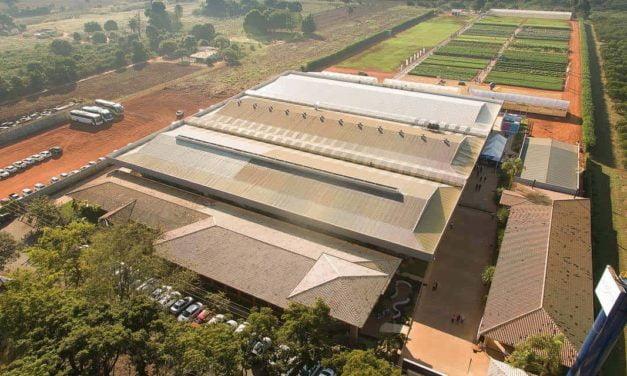 Empresa de sementes investe R$10 milhões na modernização de matriz em São Paulo
