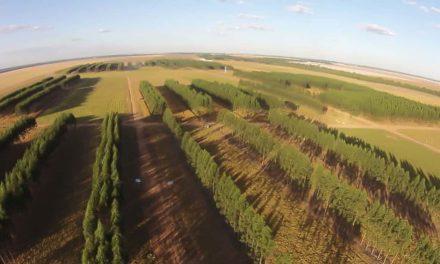 Agricultura brasileira e redução dos gases de efeito estufa