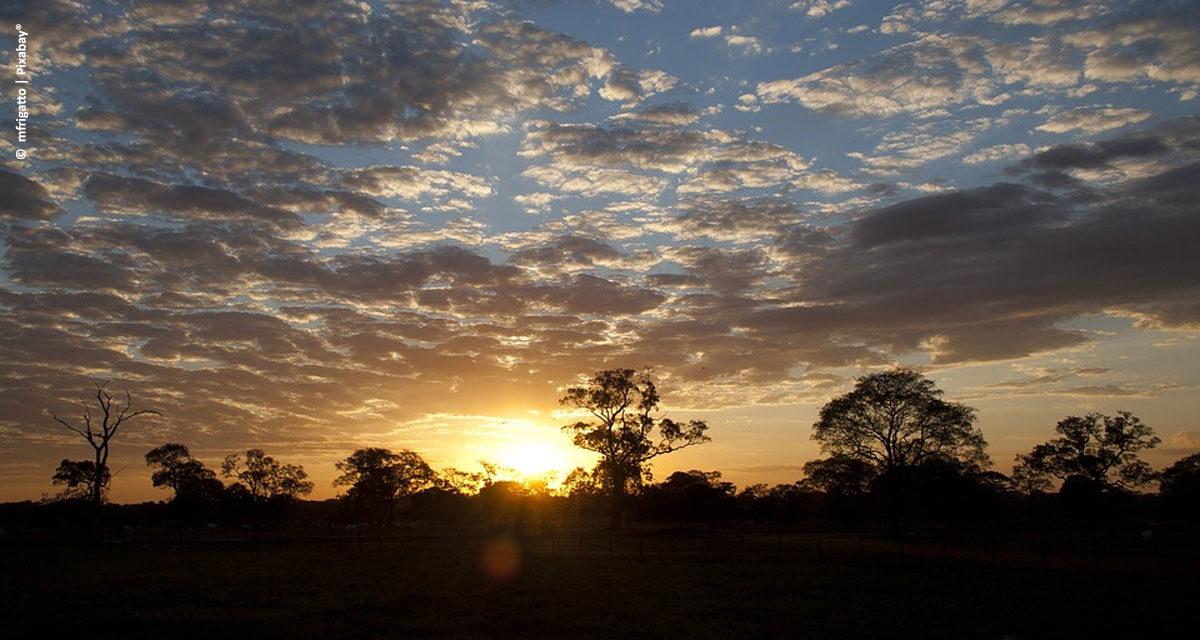 GeoPantanal discute desenvolvimento sustentável do bioma