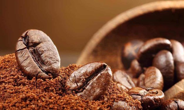 Brasil exporta 3,68 milhões de sacas de café em novembro