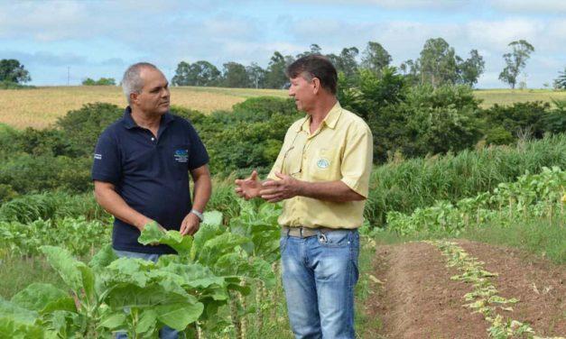Extensão Rural completa 70 anos no Brasil – CATI faz parte dessa história
