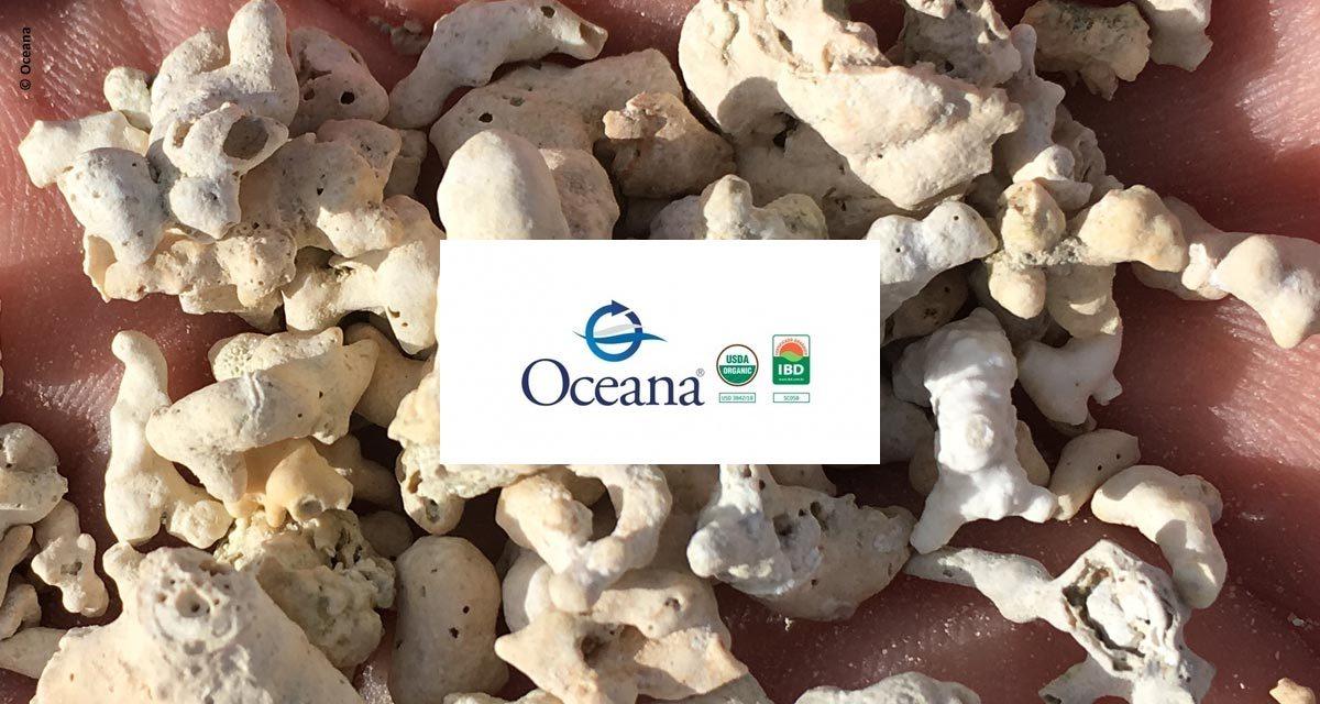 Oceana Minerals obtém certificação internacional que reforça a alta qualidade de seus produtos
