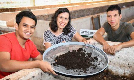 Minhocas unem produção animal e sustentabilidade