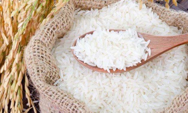 Josapar desenvolve primeiro e-commerce de arroz do Brasil