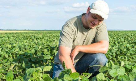 Soluções para os desafios enfrentados pelo jovem agricultor