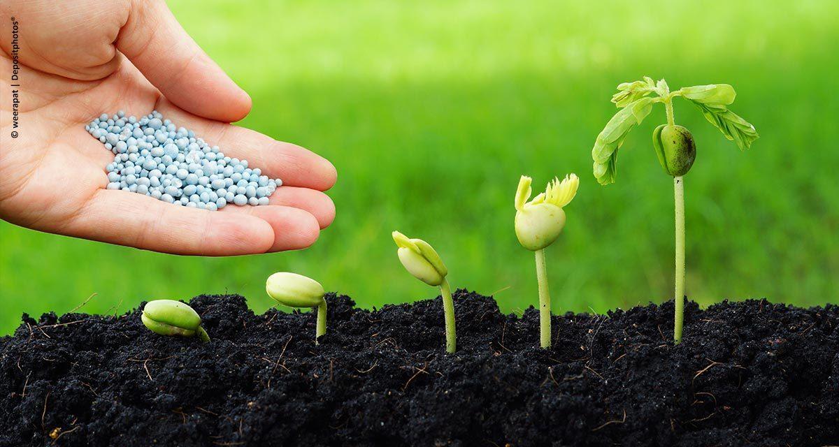 Mosaic Fertilizantes supera expectativas após um ano da aquisição de novas unidades operacionais