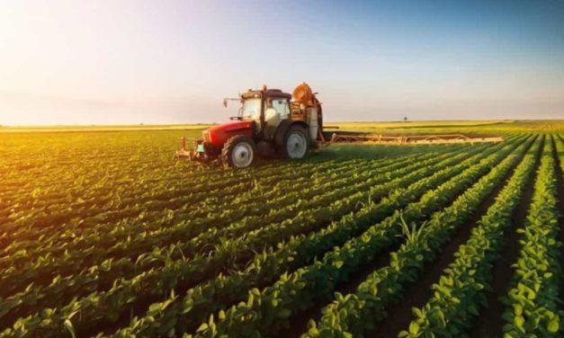 IHARA apresenta soluções para controle da ferrugem asiática e de ervas daninhas no Dia de Campo C.Vale em Palotina (PR)