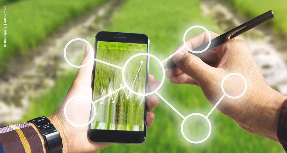 Vivo, Raízen e Ericsson anunciam startups selecionadas para impulsionar a transformação digital do agronegócio