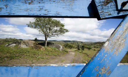 Aquisição de imóveis rurais – cuidado nas questões ambientais