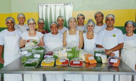 Agricultura familiar: um peso importante na economia do Brasil