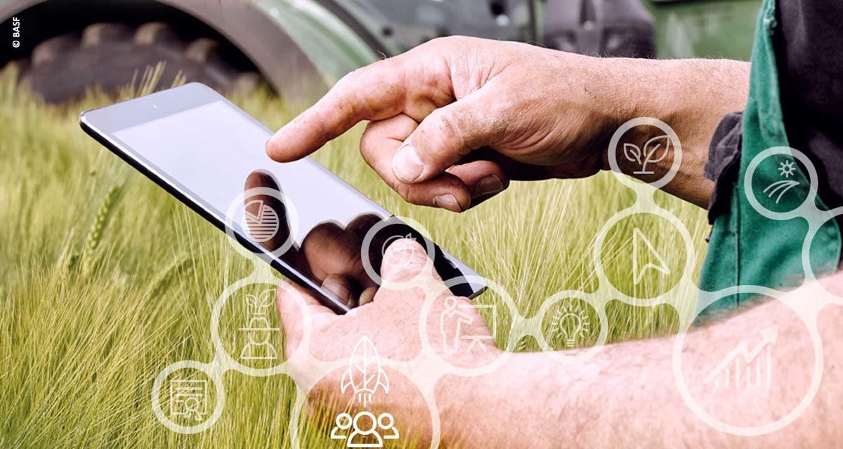 BASF lança Ecossistema AgroStart com duas grandes parcerias para aproximar startups de empresas de diversos setores