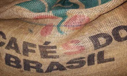 Café brasileiro precisa apostar na diferenciação para se destacar no mercado competitivo
