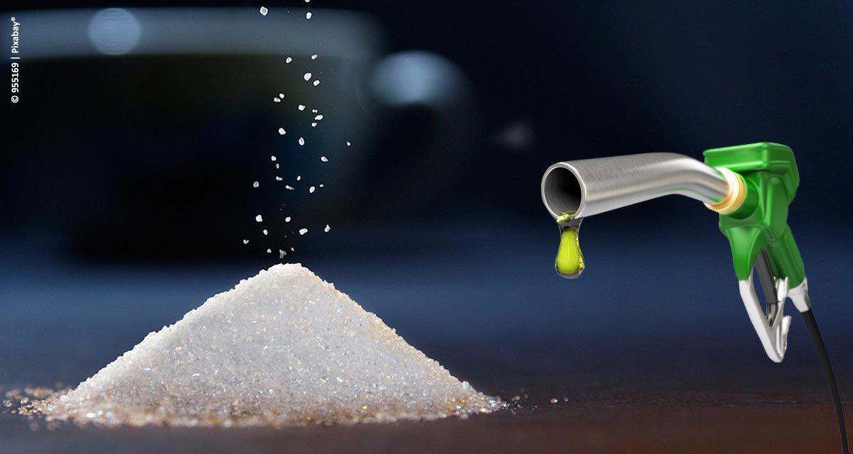 Escola da Cachaça lança curso que ensina a fabricar o próprio combustível Etanol