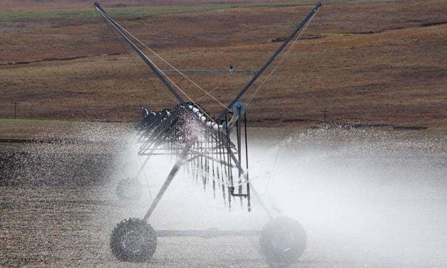Aumenta a procura de produtores mineiros por pivôs de irrigação