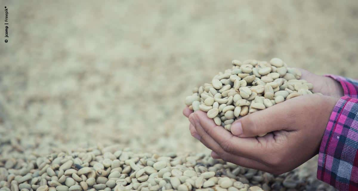 Brasil exporta 2,9 milhões de sacas de café em março