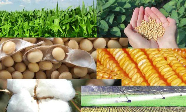 Sinagro e AgBiTech fazem parceria com foco na expansão do mercado de bioinseticidas