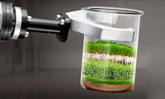 Sementes forrageiras com inteligência em absorção de água são apresentadas ao produtor goiano