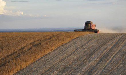 Novos valores para subvenção confirmam fortalecimento do seguro rural como instrumento de política agrícola no país