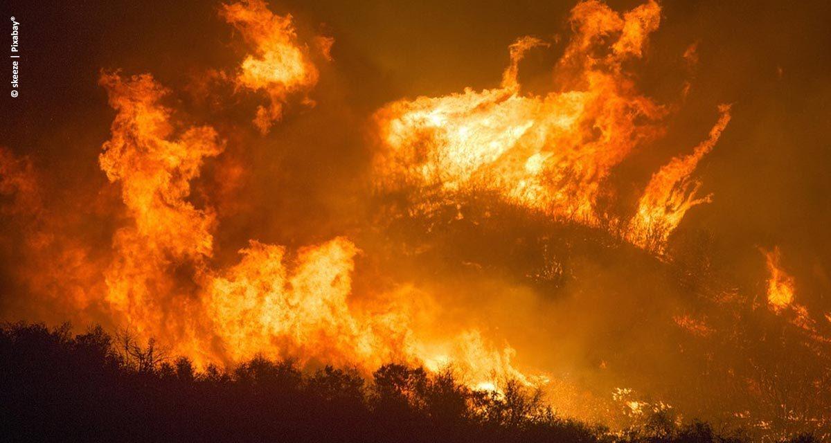 Bunge Açúcar & Bioenergia lança campanha de prevenção e combate a incêndios