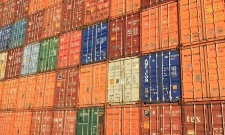 Auditores Fiscais Federais Agropecuários apontam alternativas para reduzir demora em fiscalização nos portos