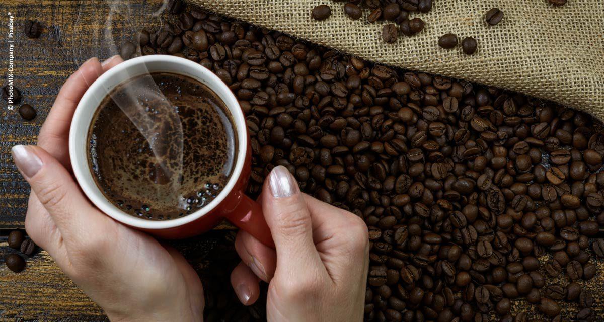 Fórum Mundial de Produtores de Café tem painel sobre caminhos para aumentar o consumo de café no mundo