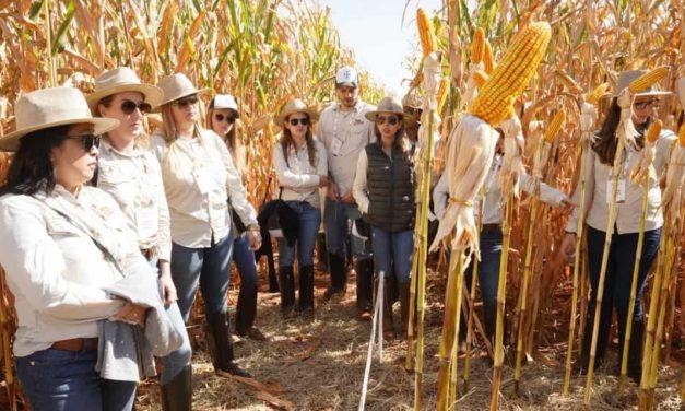 Dekalb reúne mulheres do agro para discutir os principais temas e desafios delas neste mercado