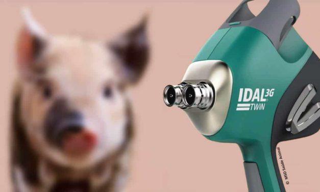 MSD Saúde Animal lança o primeiro dispositivo livre de agulha e intradérmico com dois injetores para vacinação suína
