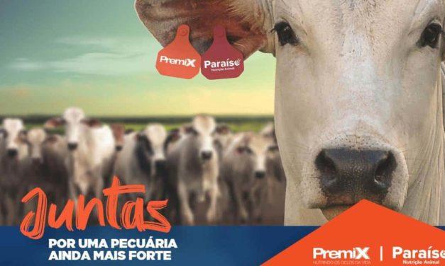 Premix e Paraíso se unem para criar uma das maiores empresas de nutrição bovina do País