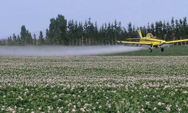 Aplicação aérea depende do clima para maior efetividade nas culturas