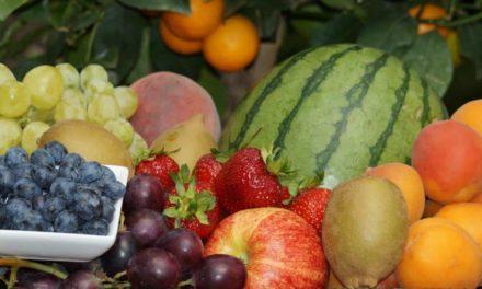 Fruta de qualidade exige nutrição equilibrada