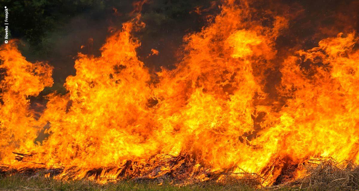 Como combater focos de incêndio em zonas rurais?