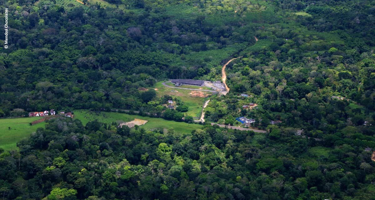 Família resgata fazenda de cacau e ganha reconhecimento com chocolate premium brasileiro